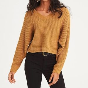 American Eagle V-neck Cropped Sweater